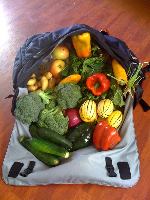 farmers market messenger bag